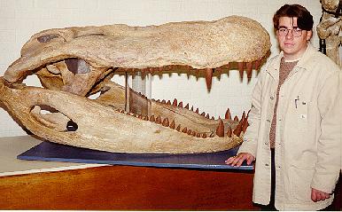 Zoología: Los más grandes de todos los tiempos