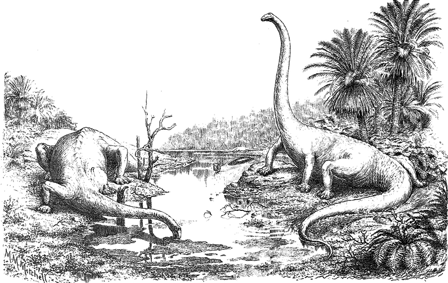 The infamous sprawling Diplodocus image by Hay 1910