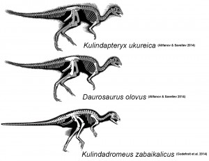 Three different interpretations of the integument distribution in the Kulinda ornithischian. Skeletals adapted from figure 4 of Alifanov and Saveliev 2014 (top two) and figure 1 of Godefroit et al. 2014 (bottom).