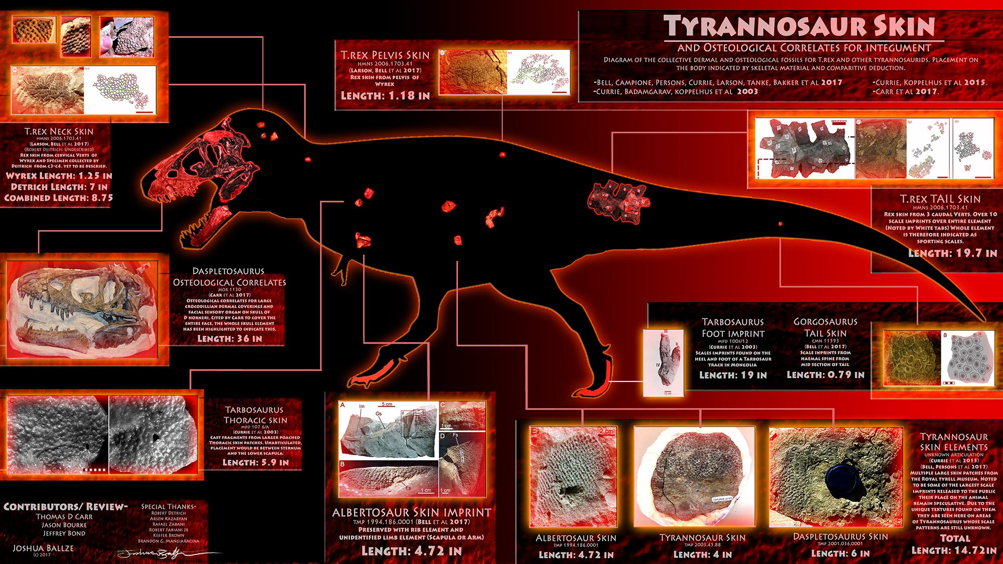 Tyrannosaur_skin_impressions-lite.jpg